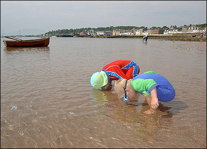 Euan and Lewis searching for shells