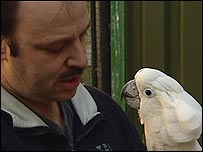 The NOP parrot sanctuary near Eindhoven, Netherlands