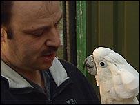 The NOP parrot sanctuary near Eindhoven, Netherlands