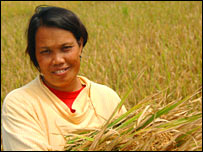 Woman with rice crop. Image: G Vergara/Irri