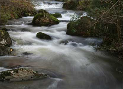 The river running through Rhos-Y-Gwaliau, between Bala and Lake Vyrnwy (Ashley Darby of Wrexham)