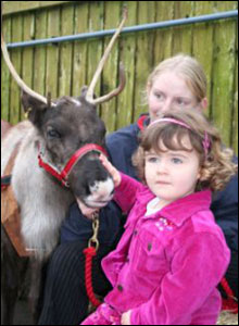 Christine Lewis' daughter Megan meets a reindeer in St Mellons, Cardiff