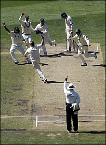 Australia players celebrate as umpire Aleem Dar (bottom) gives Steve Harmison out lbw