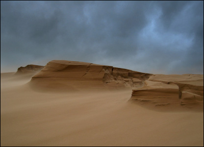 Sandstorm at Forvie