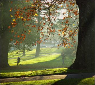 http://newsimg.bbc.co.uk/media/images/42401000/jpg/_42401936_couple-_mist.jpg