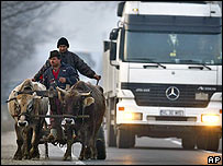 Romanian Gypsies ride in an oxen-pulled cart in Cazanesti, Romania
