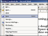 Word screen grab
