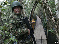 Colombian soldier guards a bridge near an illegal drugs laboratory (file image)