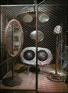 Cell (Eyes and Mirrors) 1989-93