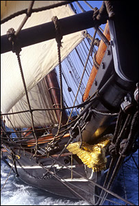 Freedom Schooner Amistad (Copyright Amistad America)