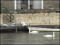 The flood defence work