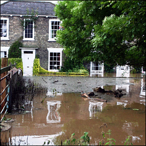 Beverley's Westwood pasture under water
