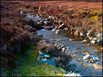 A stream on Harris. Picture by Iain Maclean