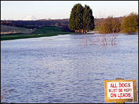 Flooded land in Leamington spa. Photo by Helen Ashbourne