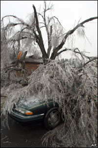 Fallen tree limbs weighted with ice cave in the roof of a parked car