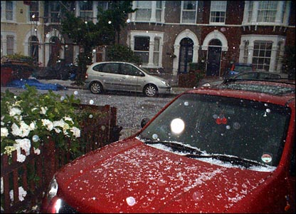 Hailstorm in Eltham. Copyright Phil Reed