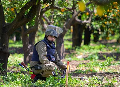 Deminer in an orange grove