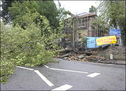 Tree blown down by school in Bristol