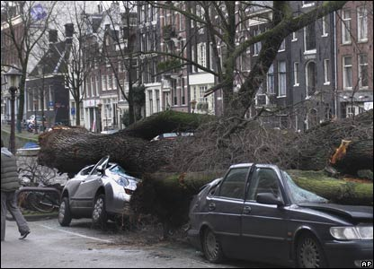 Cars battered by fallen trees in Amsterdam, the Netherlands
