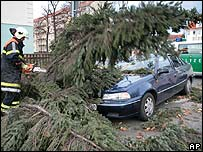 A fireman removes a tree which destroyed a car in Dresden, Germany