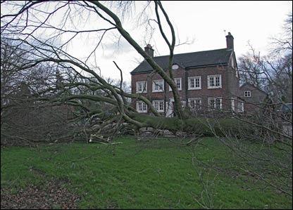 A fallen tree missing a house