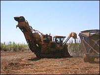 M�quina recolectora de ca�a de az�car en Piracicaba