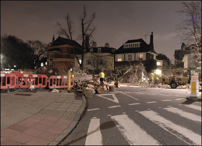 Abbey road blocked by fallen tree