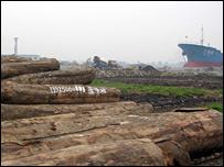 Merbau logs at Guangzhou Province's Yuzhu wharf.