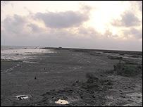 Delta wasteland