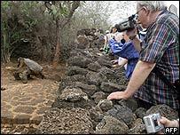 Turistas toman foto de tortuga en Islas Gal�pagos.