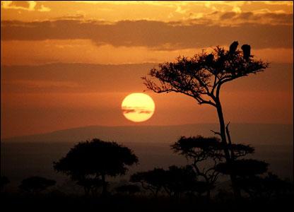 Early morning sunrise at Maasai Mara.