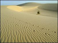 Sands of the Sahara desert