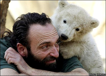 Knut rests on keeper's shoulder