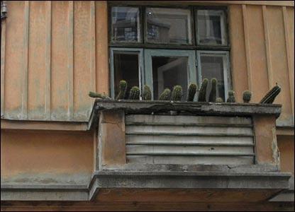 Фото Олега Таткова
