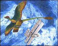 Artist's impression of Microraptor and a biplane  Image: Jeff Martz