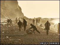 Scavengers on the beach