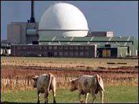 Dounreay with cows in the foreground
