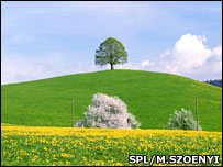 Drumlin in Switzerland (Science Photo Library/M.Szpemyi)