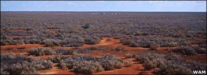 Nullarbor Plain  (Western Australian Museum)