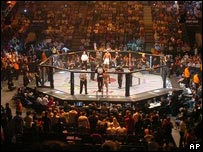 Fighting cage