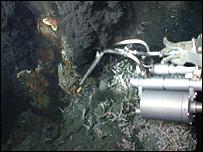 Hydrothermal vent (Jon Copley)