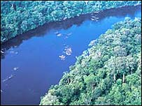River Amazon in Amapa (Pic: WWF)