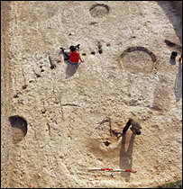 Durrington Walls excavation  Image: National Geographic