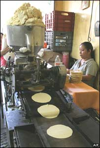 Elaboraci�n de tortillas
