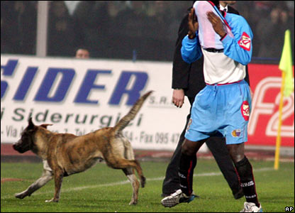 Catania's Mark Esudei covers his face from smoke as a dog runs across the pitch