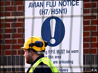 Avian flu notice at a plant where birds are being culled