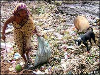 Woman scavenges rubbish from a municipal dump in India's Tripura state