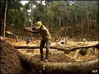 Miners clear forest in Brazil's Amazon rainforest