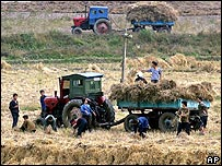 North Koreans working in a field near Pyongyang (file photo)