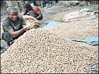 Man holds up groundnuts in Nigeria